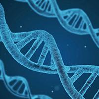 遺伝子検査無料